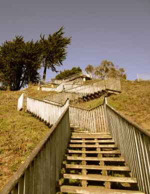 21-up-turtle-hill-steps