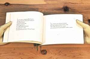 book-twig-poem-lake