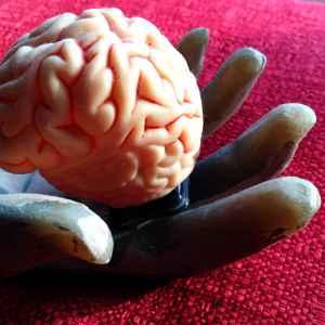 brain-in-hand