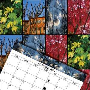 print-tree-calendar-october-square