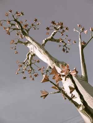 tree-wall-18