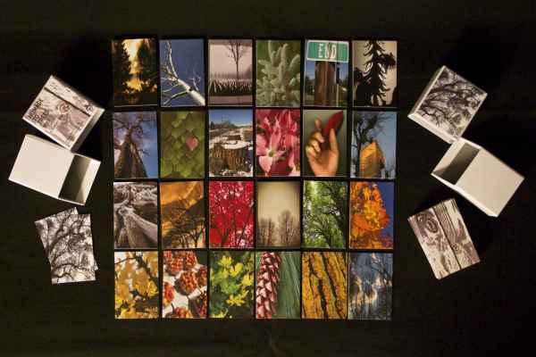 memory-cards-trees-set-1-a