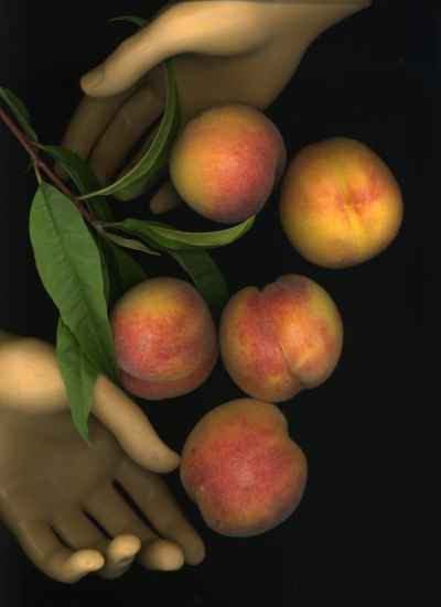our-peaches