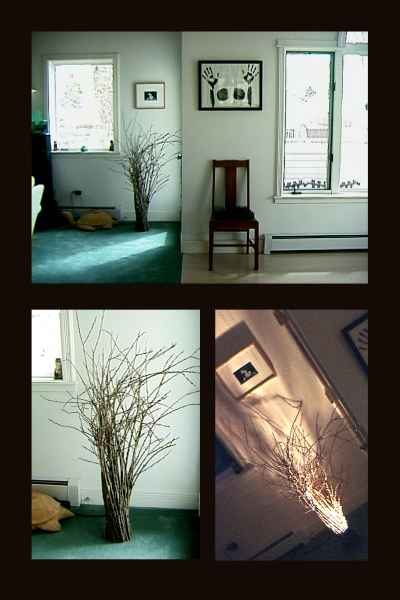 twig-light