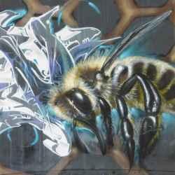 bee-aware
