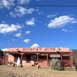 bobcat-bite