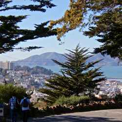 coit-tower-vista