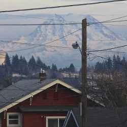 rainier-through-the-wires