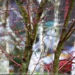 tree-mutation