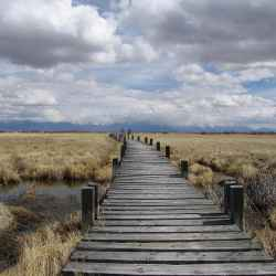 alamosa-wildlife-refuge
