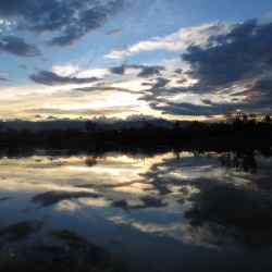 walden-ponds-reflection